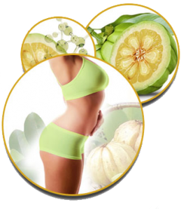 garcinia cambogia result on girl